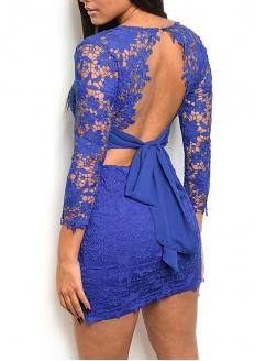 Floral Lace Long Sleeve V-neck Dress - Royal