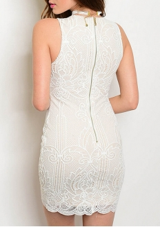 Lace Bodycon Dress with Lining Nude - Ivory